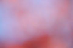 Rosa bakgrund - materielfoto Royaltyfri Fotografi