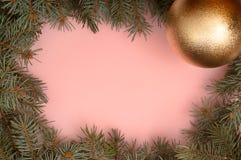 Rosa bakgrund med och julgranfilialer och guld- boll royaltyfri bild