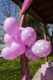 Rosa ballonger Arkivfoto