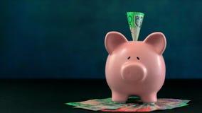 Rosa begrepp för spargrispengar på mörker - blå bakgrund Arkivfoton