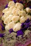 Rosa bianca Fotografie Stock Libere da Diritti