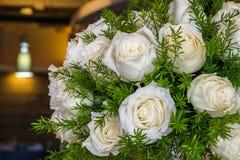 Rosa bianca con la felce di asparago Immagini Stock Libere da Diritti