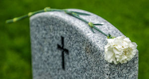 Rosa bianca sulla pietra tombale Immagini Stock