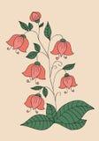 Rosa blåklockor Royaltyfria Foton