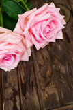 Rosa blühende Rosen auf Holz Lizenzfreie Stockfotografie
