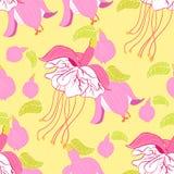 Rosa blanco de la bailarina blanca híbrida fucsia de la flor Illustr del vector Foto de archivo