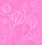 Rosa blom- bakgrund Arkivfoto