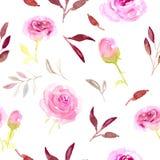 Rosa blom- sömlös modell för vattenfärg på vit bakgrund Royaltyfri Bild