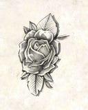Rosa blomma vektor illustrationer