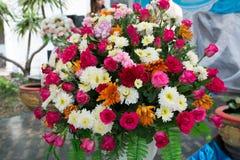 Rosa blomma Royaltyfria Bilder