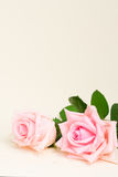 Rosa blommande rosor på trä Arkivfoton
