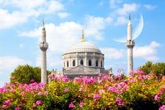 Rosa blommor med Pertevniyal Valide Sultan Mosque, en imperialistisk moské för ottoman i Istanbul, Turkiet Solig dag för sommar m royaltyfria bilder