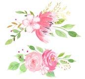 Rosa blomning med sidarasterillustrationen stock illustrationer