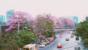 Rosa Blume durch den Straßenhintergrund Stockfotos