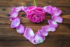 Rosa Blume im Herzen von Blumenblättern auf dem braunen hölzernen Hintergrund Stockfotografie