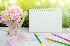 Rosa Blume, Leerseitenpapier des Kalenders und Bleistifte über grünem Gras der Natur im weichen Pastellton Stockbilder