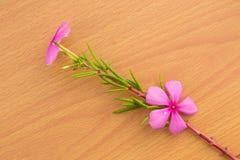 Rosa Blume mit grünem Blatt stockbilder