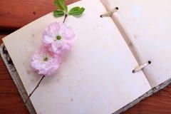 Rosa Blumen auf einer Leerseite Stockbild