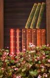 Rosa Blumen und Bücher Stockbild
