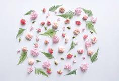 Rosa Blumen und Farnblätter Stockfotografie