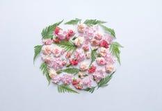 Rosa Blumen und Farnblätter Stockbild