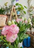Rosa Blumen- und Grünblätter in einem kleinen Garten voll von Anlagen und von Blumen Lizenzfreies Stockfoto