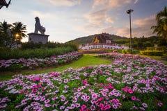 Rosa Blumengärten mit Hor-khum luang Tempel am Pavillon a stockfotografie