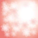 rosa Blumenhintergrund Lizenzfreies Stockbild
