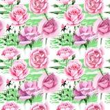 Rosa-Blumenmuster des rosa Tees des Wildflower in einer Aquarellart Stockbilder