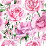 Rosa-Blumenmuster des rosa Tees des Wildflower in einer Aquarellart Lizenzfreie Stockfotos