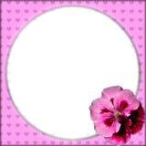 Rosa Blumenrahmen Stockfoto