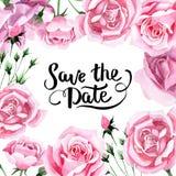 Rosa-Blumenrahmen des rosa Tees des Wildflower in einer Aquarellart Stockfotos
