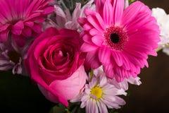 Rosa Blumenstrauß Lizenzfreie Stockbilder
