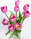 Rosa Blumenstrauß von Tulpen Lizenzfreie Stockfotografie