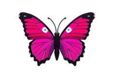 Rosa bonito borboleta colorida Fotos de Stock Royalty Free