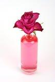 Rosa in bottiglia Fotografie Stock
