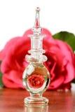 Rosa in bottiglia Fotografia Stock Libera da Diritti