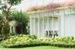 Rosa bougainvilleablommor med gr?na sidor p? taket av det moderna huset arkivfoton