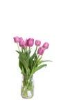 Rosa bukett av tulpan royaltyfri fotografi
