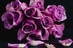 Rosa bukett på en svart bakgrund royaltyfri foto