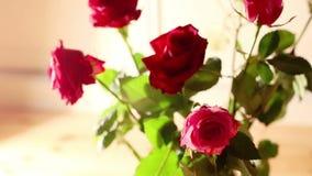 Rosa bukettdockaskott lager videofilmer