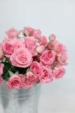 Rosa Buschrosen in einem Eimer Stockbilder