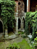 Rosa Coeli. Beautiful ghotic abaddoned monastery in czech republic Stock Photography