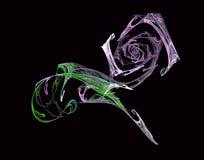 Rosa colorida do Fractal no preto ilustração stock