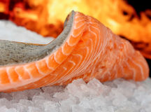 Rosa coloriu os peixes, alimento do verão com marinade do vinho Imagens de Stock Royalty Free