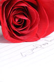 Rosa com amor Foto de Stock Royalty Free
