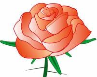 Rosa com espinho Fotografia de Stock Royalty Free