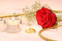 Rosa com faixas de casamento Fotografia de Stock Royalty Free