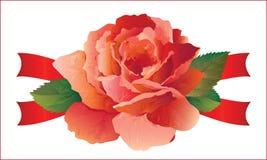 Rosa con i nastri Fotografia Stock