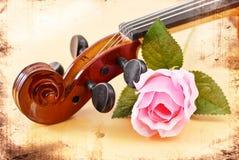 Rosa con il violino fotografia stock libera da diritti